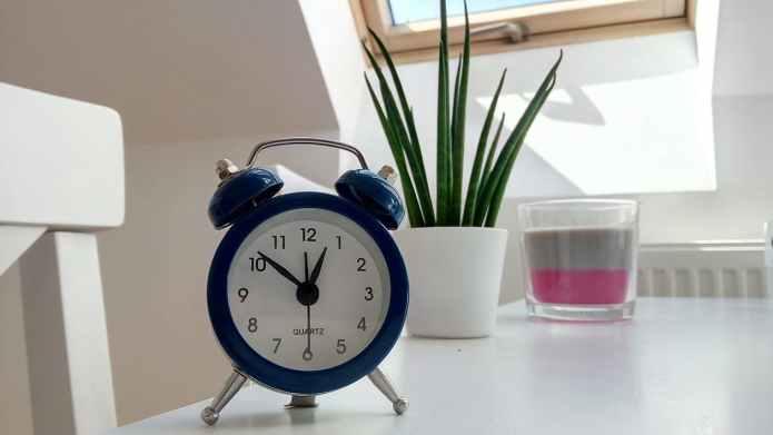 Time, Season, Clock, Plant, Writing, Blogging, Journaling