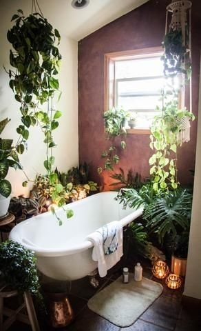 Lovely House Plants In The Bathroom06