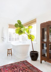 Lovely House Plants In The Bathroom20