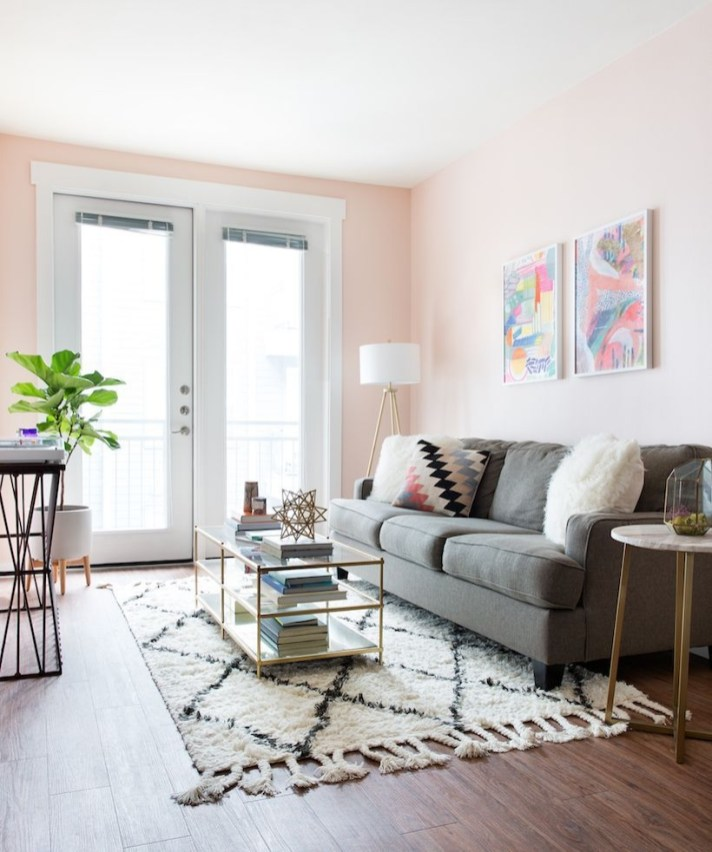 Pink And Gray Modern Living Room Decor 28
