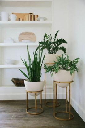 Plant Stand Design For Indoor Houseplant 18