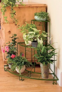 Plant Stand Design For Indoor Houseplant 38