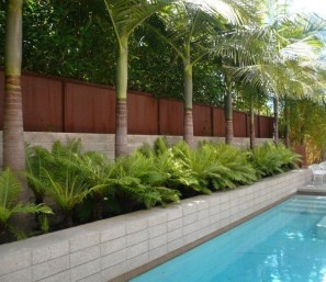 Suitable Plants Grow Beside Swimming Pool 13