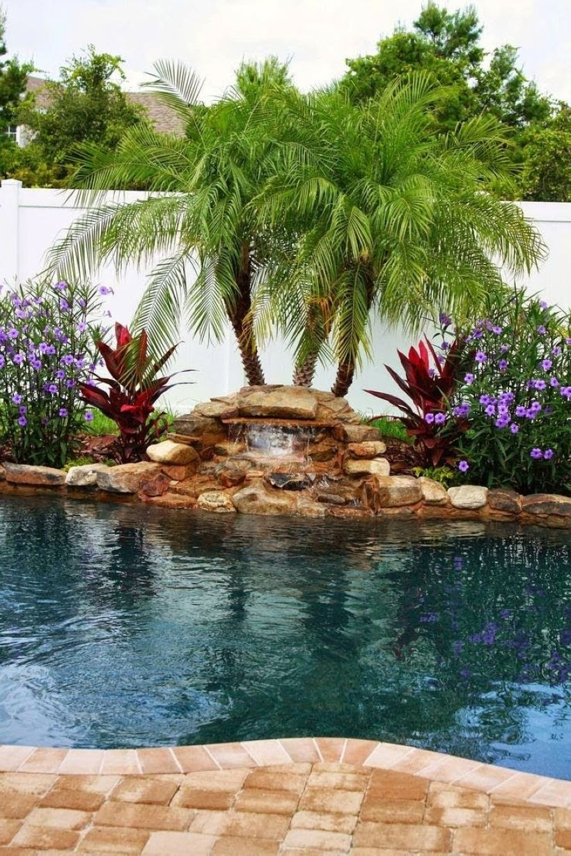 Suitable Plants Grow Beside Swimming Pool 36