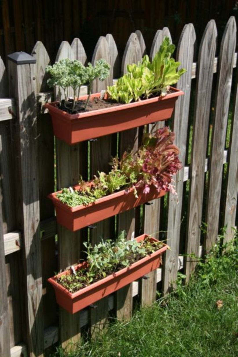 Vertical Vegetable Garden Ideas To Inspire You 24