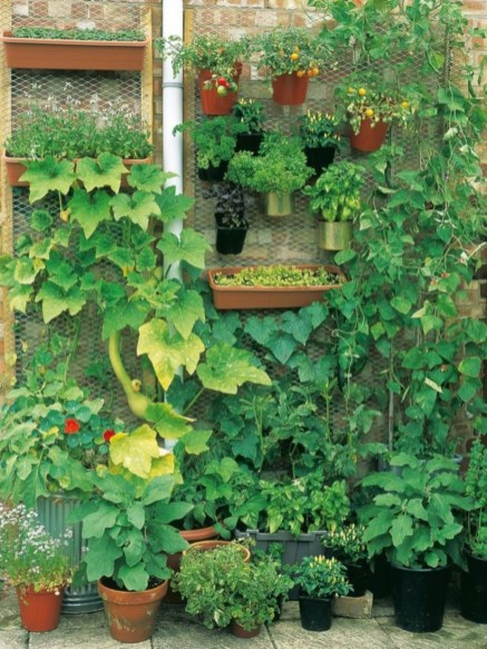 Vertical Vegetable Garden Ideas To Inspire You 26
