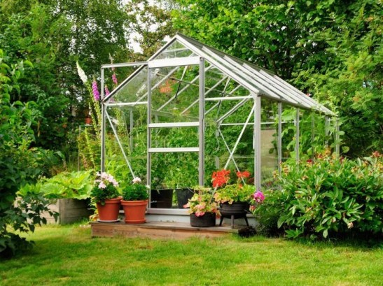 Tropical Plantation Ideas You Can Try In Your Garden14