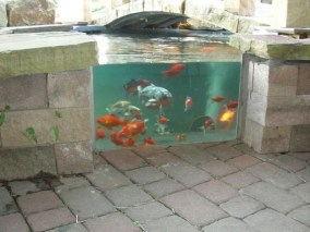 Amazing Indoor Fish Pond To Upgrade Your House 40