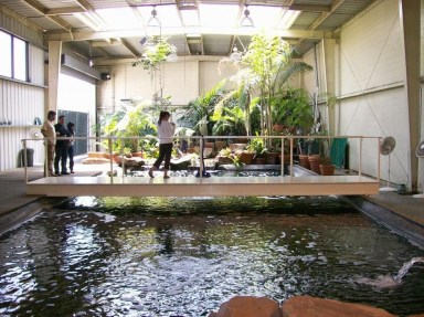 Amazing Indoor Fish Pond To Upgrade Your House 45