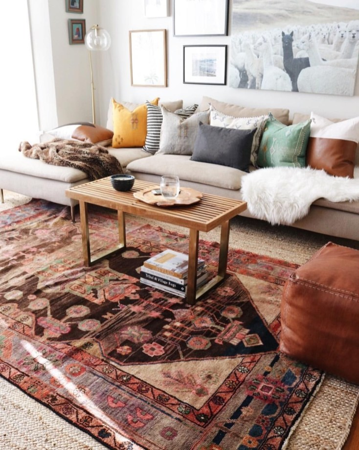 Best Rug To Decor Your First Living Room 19