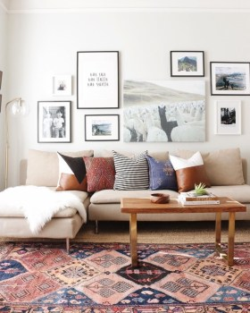 Best Rug To Decor Your First Living Room 30
