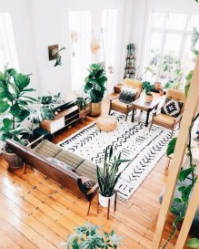 Best Rug To Decor Your First Living Room 42