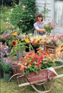 Tips For Growing Spring Flower You Can Try 31