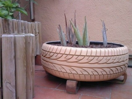Best Planting Aloe Vera Ideas In Your Terrace 09