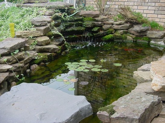 Awesome DIY Ponds Ideas With Small Waterfall 22