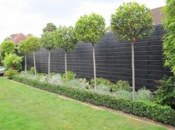 Gorgeous Garden Fences To Beautify Your Backyard 04