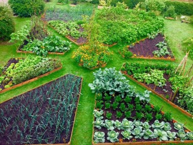 Inspiring Vegetable Garden Design For Your Backyard 03