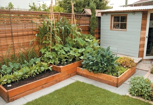 Inspiring Vegetable Garden Design For Your Backyard 10