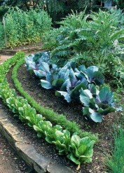 Inspiring Vegetable Garden Design For Your Backyard 15