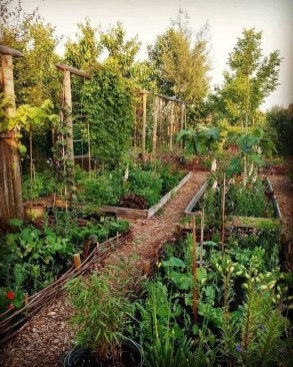 Inspiring Vegetable Garden Design For Your Backyard 19