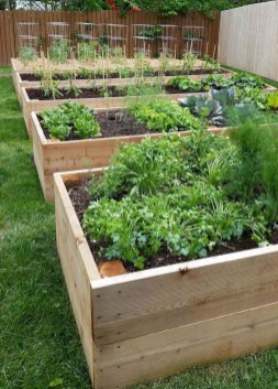 Inspiring Vegetable Garden Design For Your Backyard 31