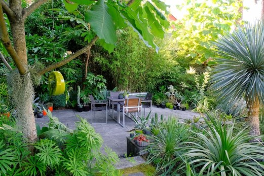 Small Courtyard Design With Some House Plants 24