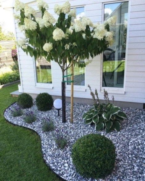 Incredible Edging Garden For Your Front Yard 36