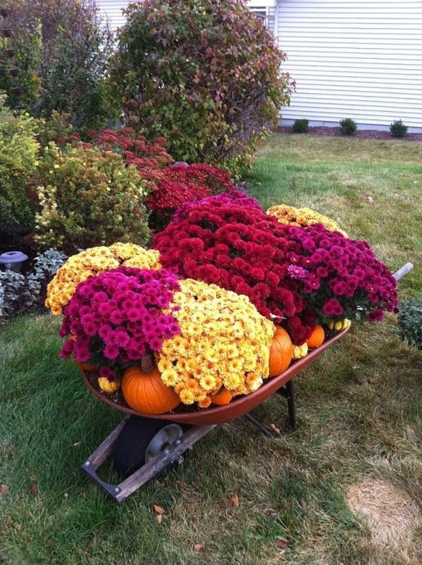 Lovely Fall Garden Idea With Perfect Ornaments 28