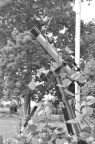 Old Telescope Used as a Flagpole Garden Feature for the Hyacinth Bean