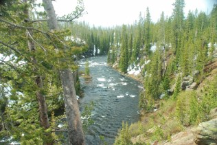 The Lewis River flows along US 89 into Yellowstone National Park