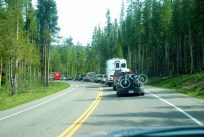 Stop-and-Go Traffic Entering Yellowstone