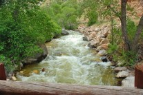 A mountain stream in the Bighorn National Forest