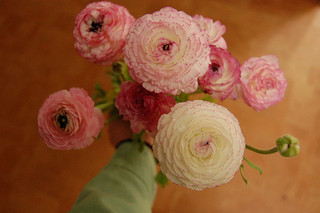 bouquet-ranunculus