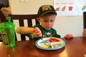 New Foods for the Picky Eater