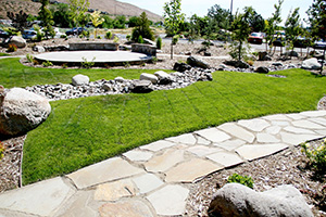 Commercial Landscape Installation