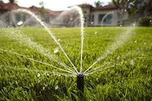 sprinkler wattering grass