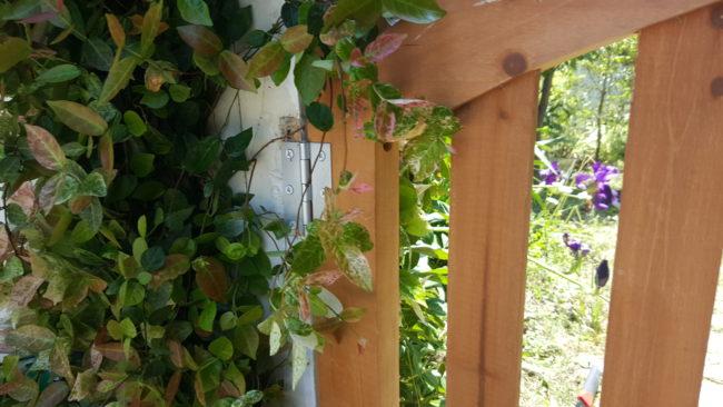 お庭木製ドア交換