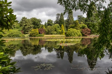 Sheffield Park National Trust, Sigma 17-70mm lens