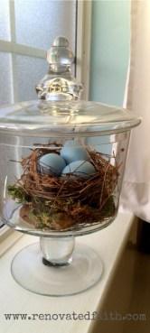 tall nest