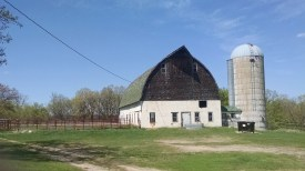 100 year old barn with a snazy new horse fence in northern minnesota