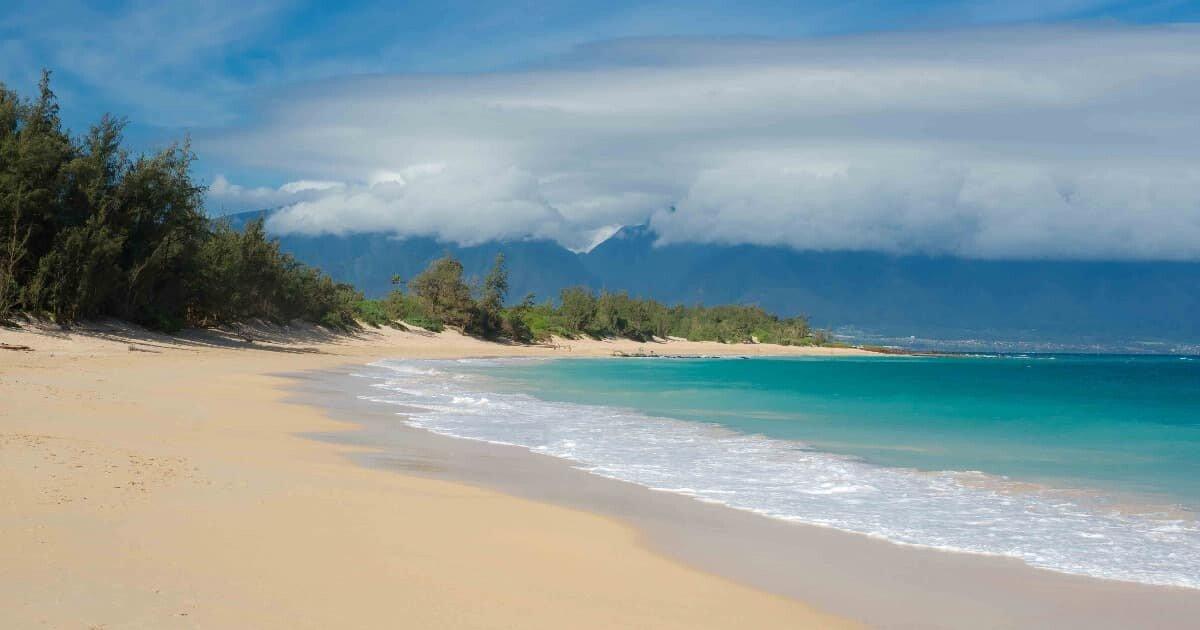 "Artikelbild von Simple Maui Wedding; ""Baldwin Beach Maui, Hawaii"" (Creative Commons Attribution-Share Alike 3.0 Unported license)"