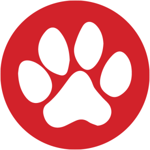 Rentals On The Ocean Pawprint Favicon - Pets Always Welcome!