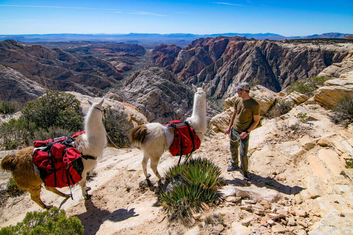 "Our mission is ""To explore, enjoy, and protect the backcountry of the west."""