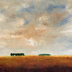 WR Prairie Sky
