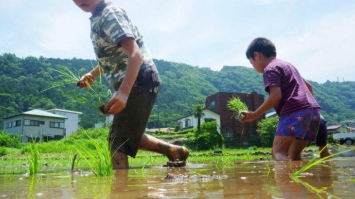 """子どもの野外活動で学んだのは """"見守ること"""" の難しさ"""