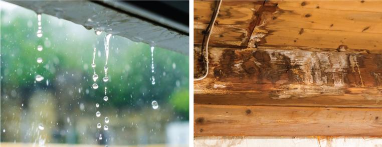 雨樋には、建物の美観を保つだけでなく、建物自体の腐食を防ぐ役割もあります