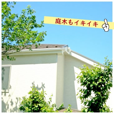 雨だれで軒下地面が掘り下げられることを防ぎ、外壁庭木などを守ります。