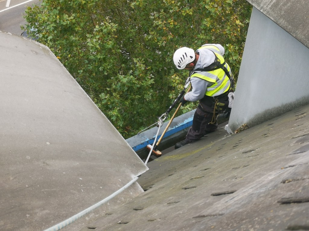 gutter maintenance, cleaning