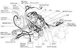 | Repair Guides | Vacuum Diagrams | Vacuum Diagrams