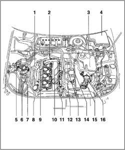 | Repair Guides | Component Locations | Audi A4 18l